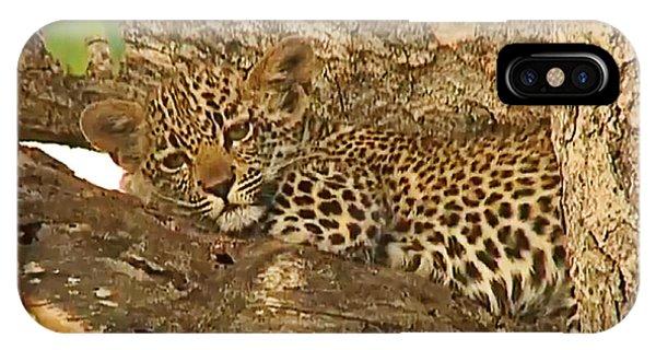 Leopard Cub IPhone Case