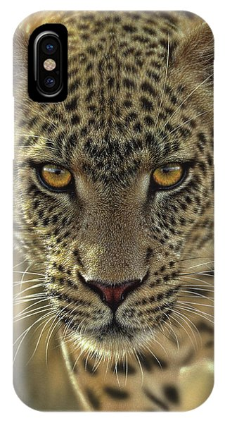 Leopard - On The Prowl IPhone Case