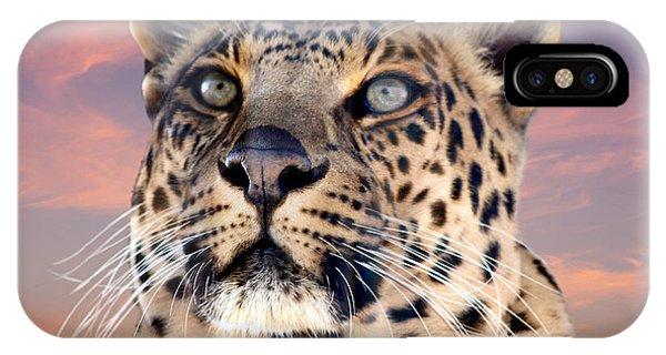 Leopard Portrait Number 3 IPhone Case