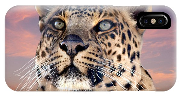 Leopard Portrait Number 3 IPhone Case