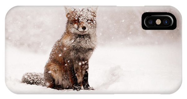 Let It Snow 6 - Christmas Card Red Fox In The Snow IPhone Case
