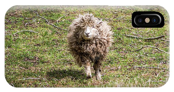 Lettie The Leicester Longwool IPhone Case