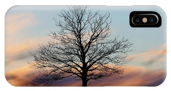Liberty Tree Sunset IPhone Case