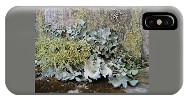 Lichen And Old Fence #2 IPhone Case