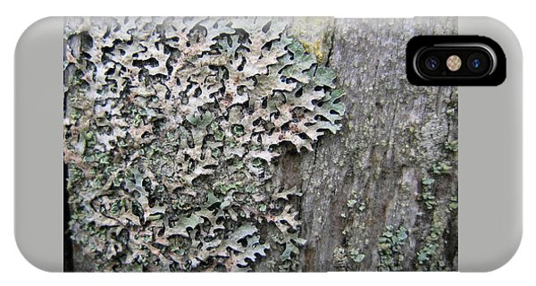 Lichen And Old Fence #3 IPhone Case