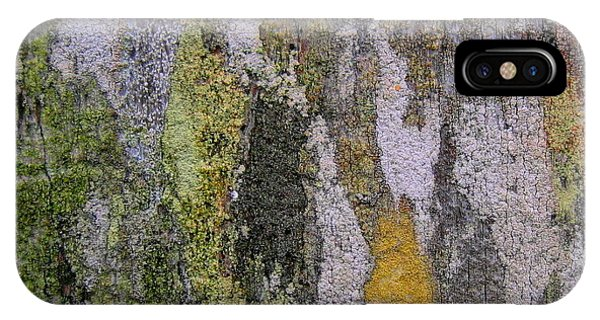 Lichen And Old Fence #4 IPhone Case