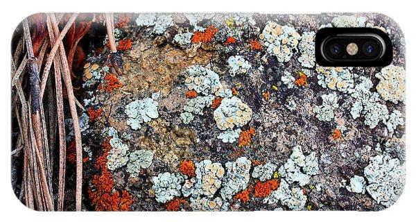 Lichen With Pine IPhone Case