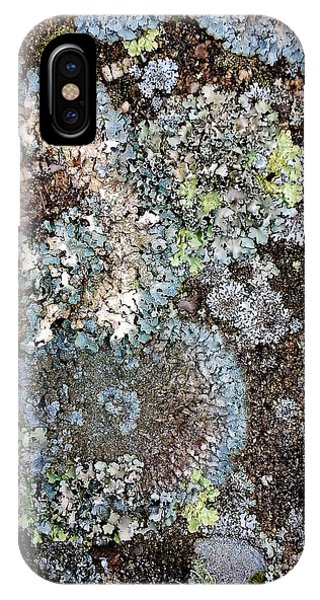 Lichens IPhone Case