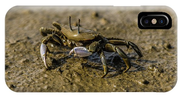 Little Things iPhone Case - Life In Mud Flat by Hyuntae Kim