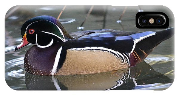 Wood Ducks iPhone Case - Life Of Leisure by Fraida Gutovich