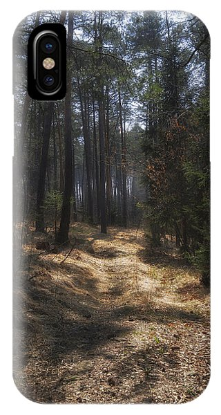Light In The Wood IPhone Case