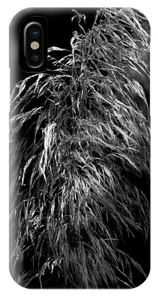 IPhone Case featuring the photograph Light Shadows by Eric Christopher Jackson