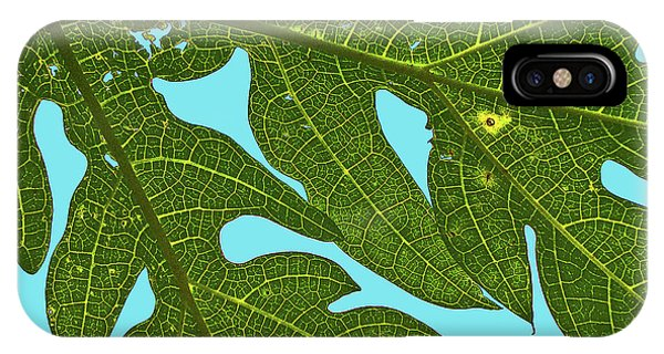 Light Through The Leaves IPhone Case