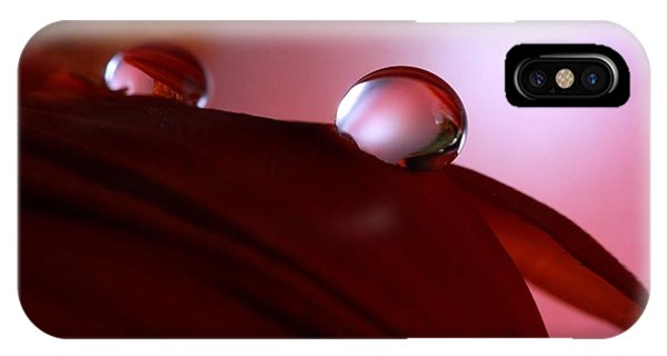 Light Water Drop On Dark Petals IPhone Case