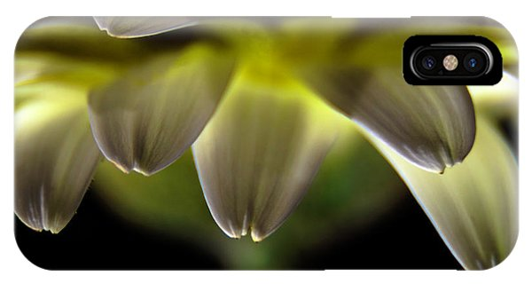 Lighting Up The Petals IPhone Case