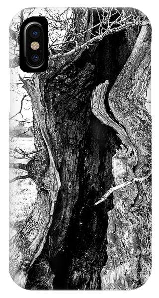 Lightning Tree IPhone Case