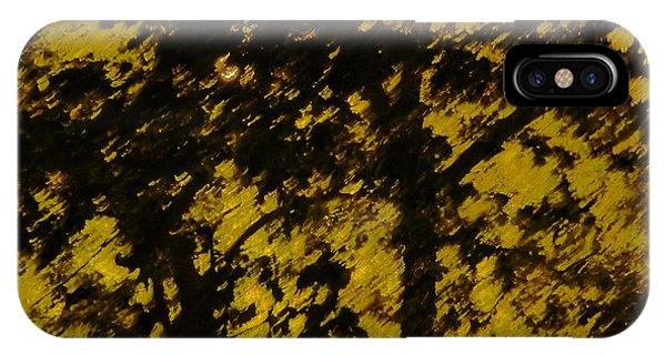 Lighttthru Forest Phone Case by Florene Welebny