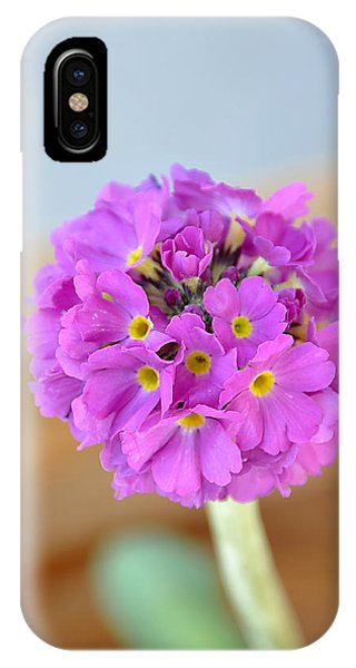 Single Pink Flower IPhone Case