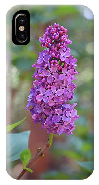 Garden Wall iPhone Case - Lilac Bloom- Photography By Linda Woods by Linda Woods