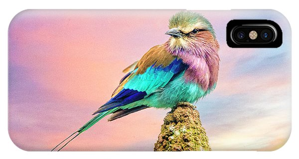 Lilac Breasted Roller At Sunset IPhone Case
