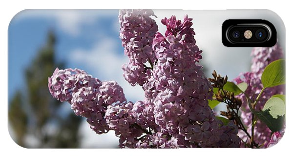 Lilacs 5547 IPhone Case
