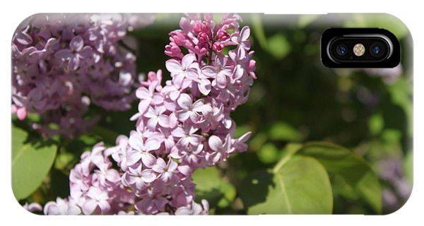 Lilacs 5552 IPhone Case