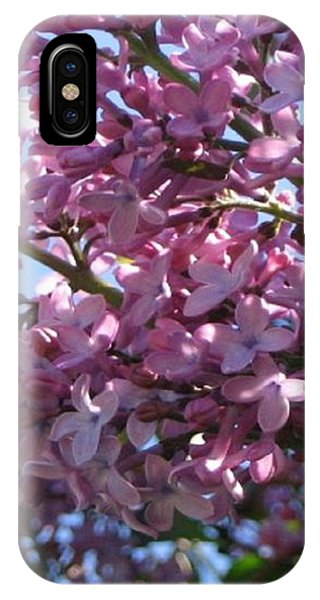 Lilacs In Bloom 2 IPhone Case
