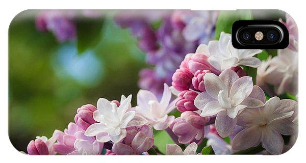 Lilacs Of Spring IPhone Case
