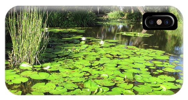 Lilies Of Bok Gardens IPhone Case