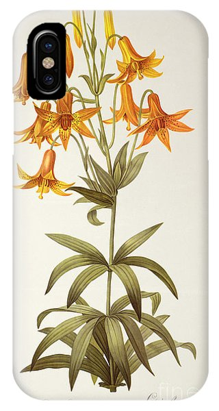 Botanical iPhone Case - Lilium Penduliflorum by Pierre Joseph Redoute