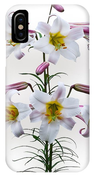 Lilium Regale IPhone Case