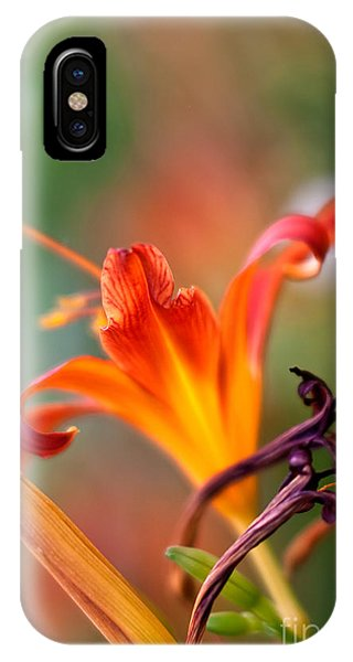 Lilly iPhone Case - Lilly Flowers by Nailia Schwarz