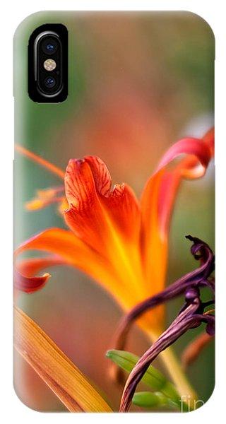 Stamen iPhone Case - Lilly Flowers by Nailia Schwarz