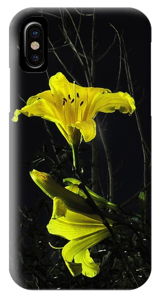 Lilly In The Evening IPhone Case