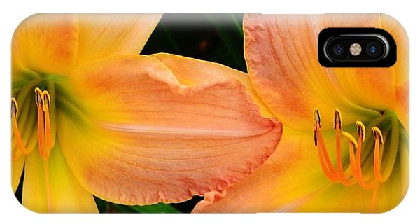 Lily Duo IPhone Case