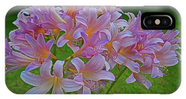 Lily Lavender IPhone Case