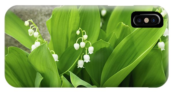 IPhone Case featuring the photograph Lily Of The Valley by Cristina Stefan
