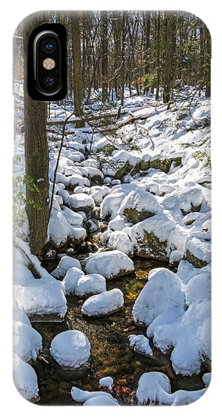 Lily Pads Of Snow IPhone Case