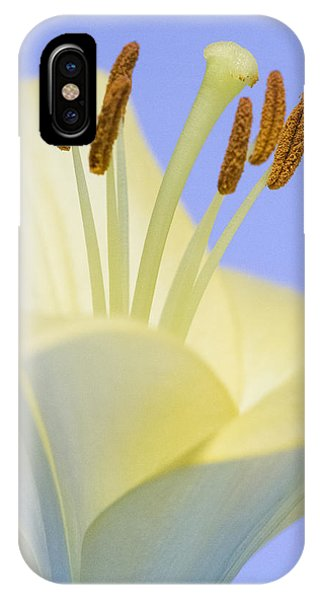 Lily Stamens  IPhone Case