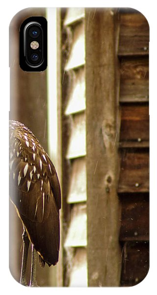 Limpkin IPhone Case