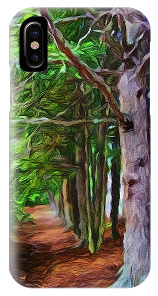 Lincoln's Path IPhone Case