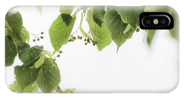 Linden In The Rain 2 -  IPhone Case