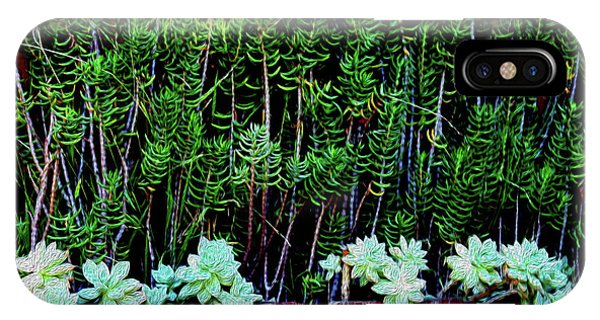 Line Of Succulents And Red Fence IPhone Case