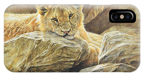 IPhone Case featuring the painting Lion Cub Study by Alan M Hunt