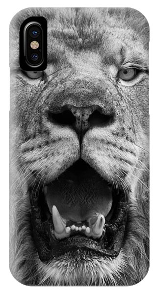 IPhone Case featuring the photograph Lion Face by Ken Barrett