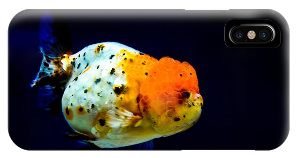 Lion Head Goldfish IPhone Case