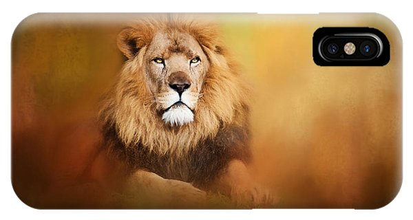 Lion - Pride Of Africa I - Tribute To Cecil IPhone Case