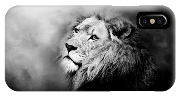 Lion - Pride Of Africa II - Tribute To Cecil In Black And White IPhone Case