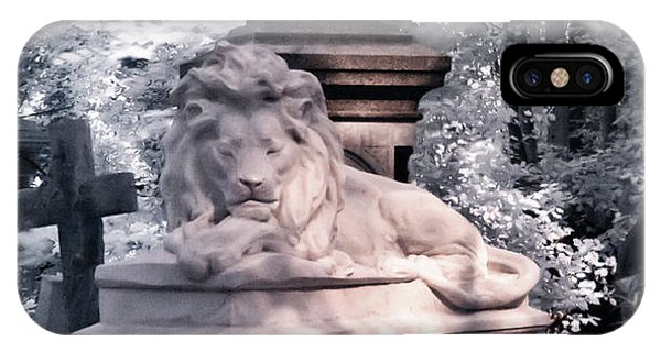 IPhone Case featuring the photograph Sleeping Lion by Helga Novelli