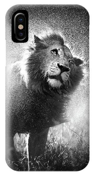 Monotone iPhone Case - Lion Shaking Off Water by Johan Swanepoel